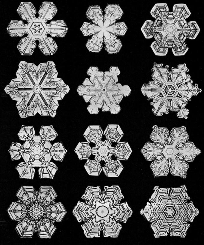 wilsonbentley_snowflakes15.jpg?resize=680%2C817