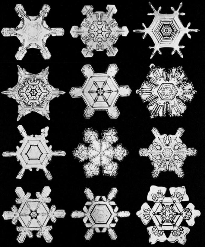 wilsonbentley_snowflakes16.jpg?resize=680%2C818