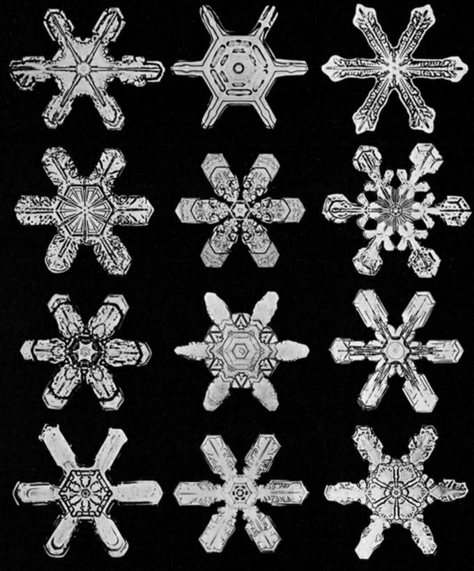 wilsonbentley_snowflakes18.jpg?resize=680%2C820