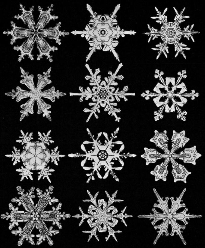 wilsonbentley_snowflakes20.jpg?resize=680%2C820