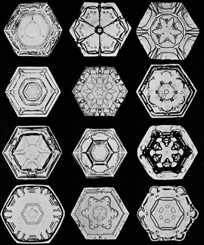 wilsonbentley_snowflakes5.jpg?resize=680%2C816
