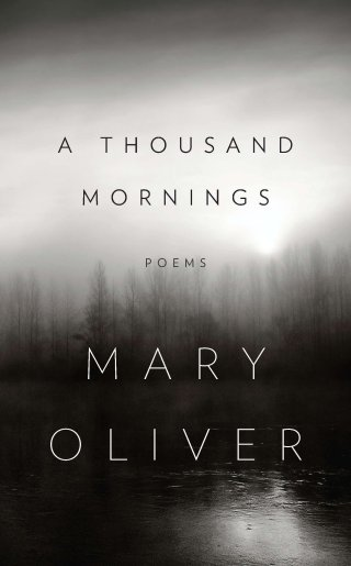 athousandmornings_maryoliver.jpg?fit=320%2C515