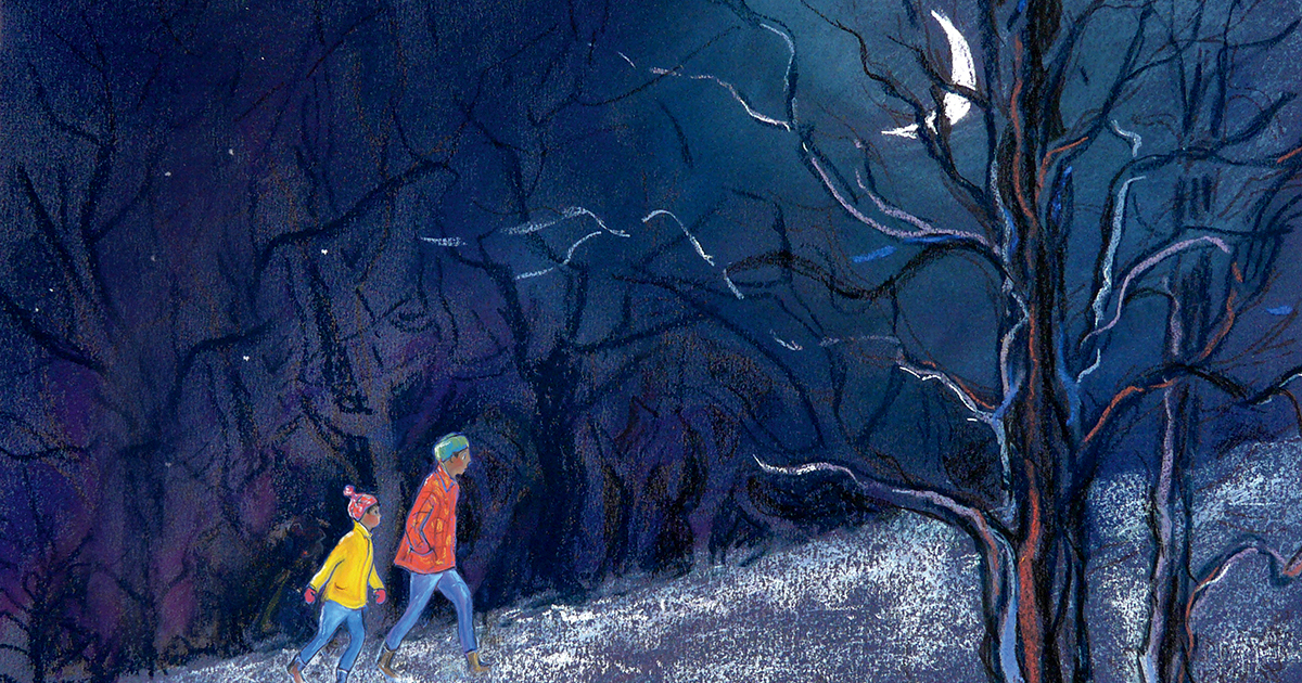 Seeking an Aurora: A Wondrous Illustrated Celebration of Earth's Most Otherworldly Spectacle of Light and Color