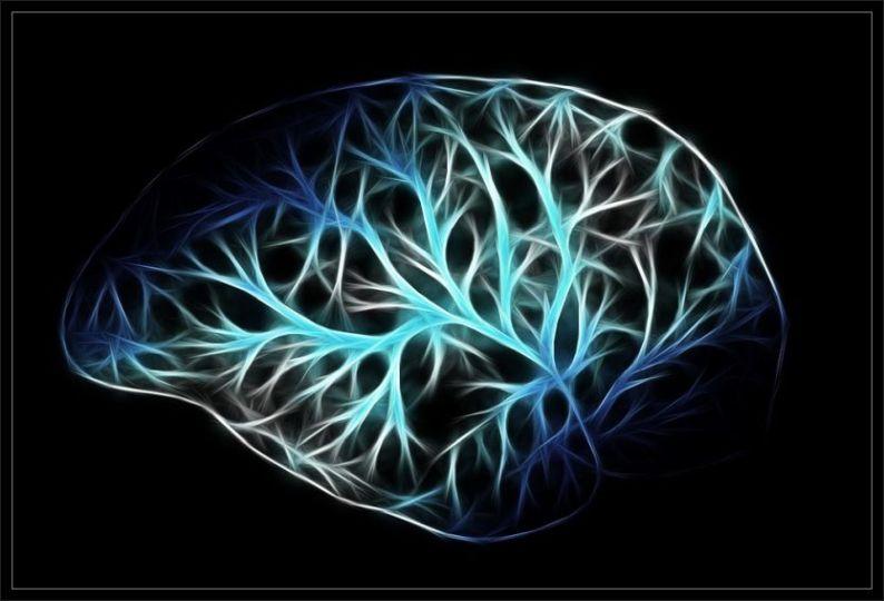 Hello Brain.