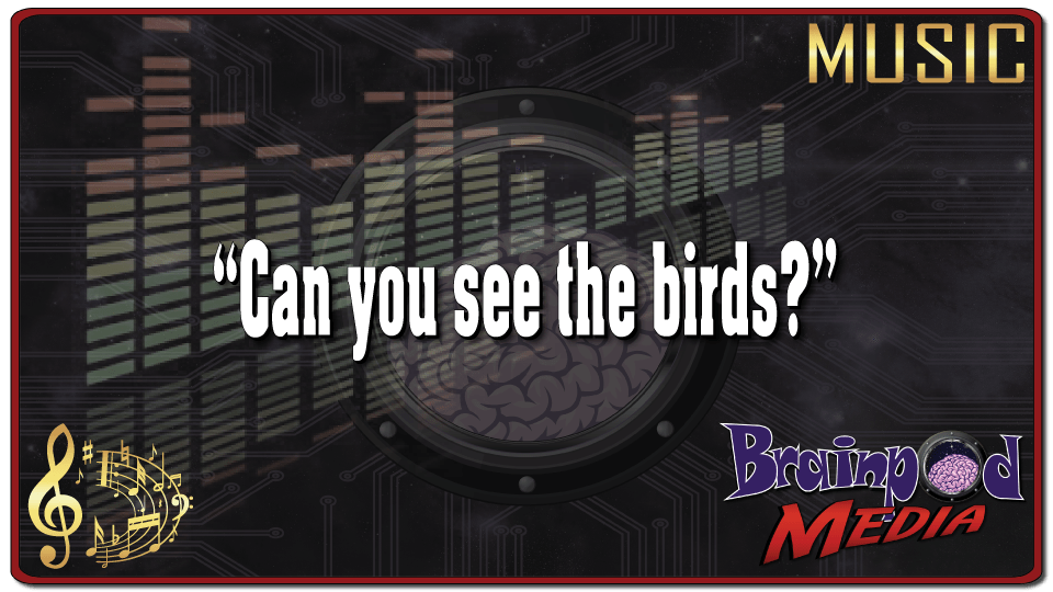 Music – Can you see the birds?