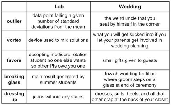 lab vs wedding terms