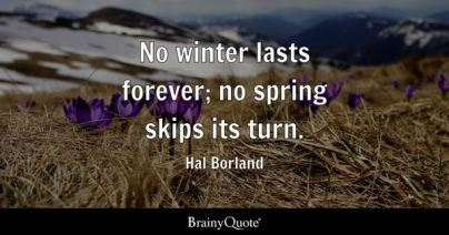 No winter lasts forever; no spring skips its turn. - Hal Borland