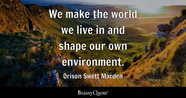 We make the world we live in and shape our own environment ...