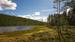 Travel-Sweden-Link-Trail-Brake-Magazine-95