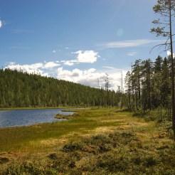 Travel-Sweden-Link-Trail-Brake-Magazine-95