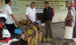penjual durian desa sidareja