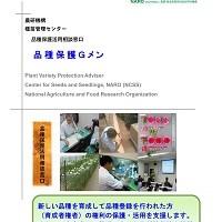 品種保護対策業務概要パンフレットの表紙