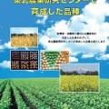 東北農業研究センターで育成した品種 (2020年版)の表紙