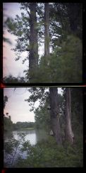 Riverspective - Matteo Albertin, Diptic, Lomo Camera, negative color film