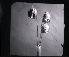 Workshop-la-scatola-fotografica-Branco-Ottico_13