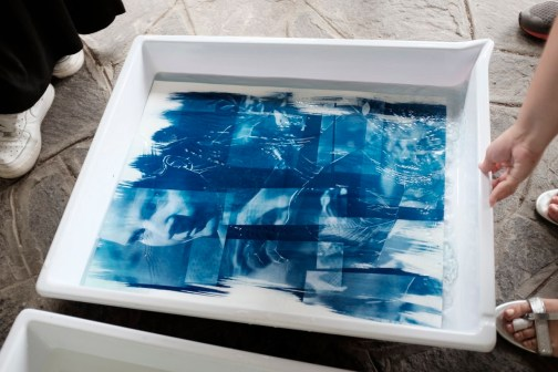 Report Cyanotype Day 2015