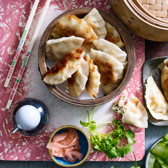 chicken gyozas recipes