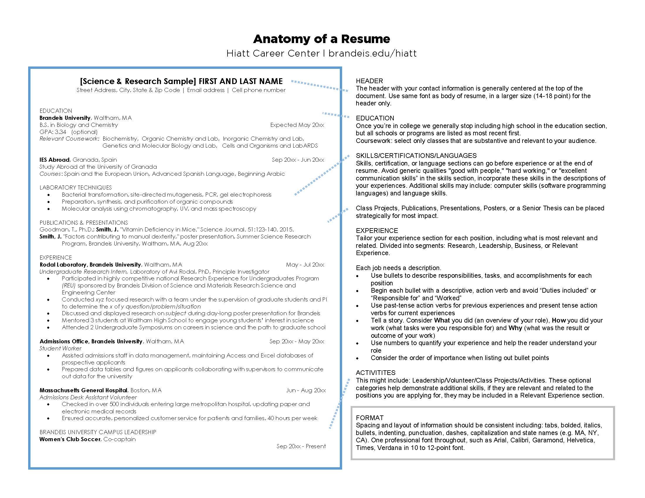 Skills For High School Resume