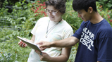 Thumbnail photo of Brandeis Experiential Learning