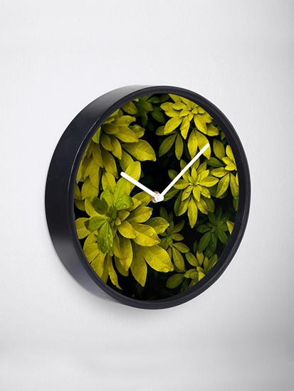 brandner-graphics-flora-&-fauna-choisya-wall-clock-2-redbubble