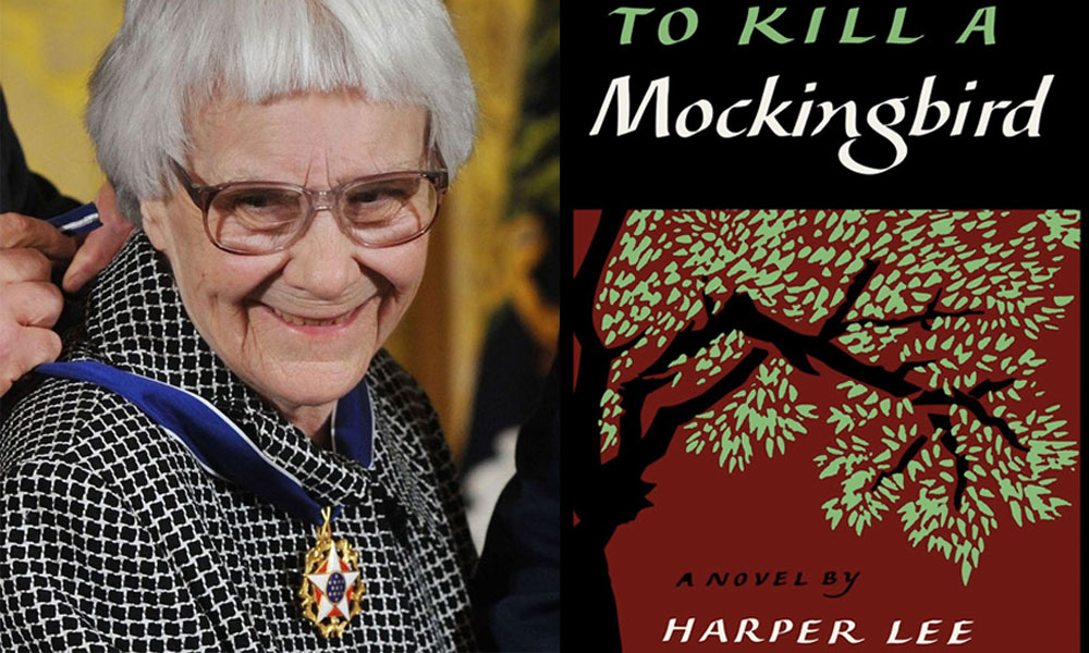 racial injustice in the south in harper lees to kill a mockingbird No american author has built a reputation as impeccable as harper lee's, and she did it with just one book: to kill a mockingbird, a powerful story of racial injustice in the pre-civil-rights south.