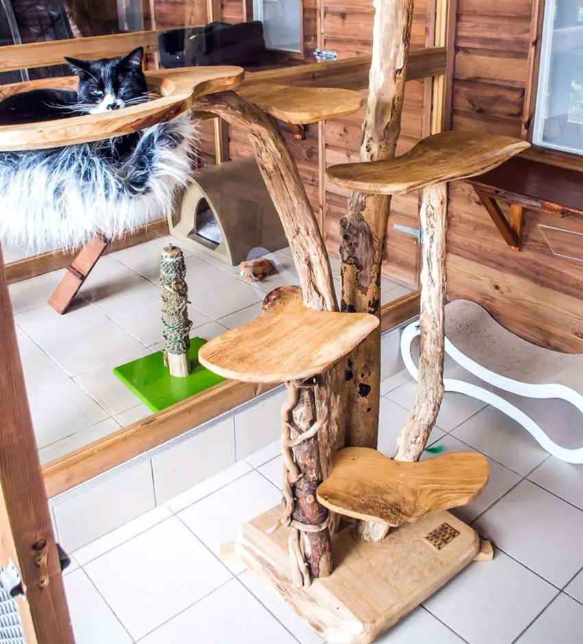 bespoke-cat-tree-brankley-cattery