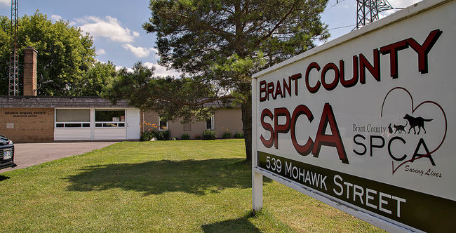 Brant County SPCA Sign