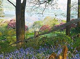 Cumbria Gardens
