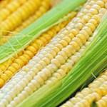 PVC-plast ersätts med socker och majs