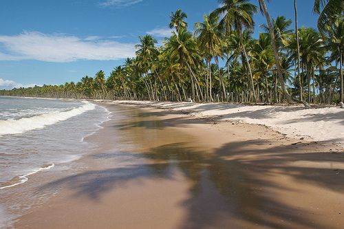 Ilha de Boipeba. Foto: Danielle Pereira