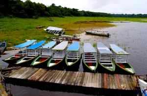 Pacotes de viagem na Amazônia