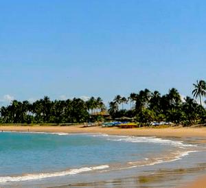 Promoções de viagens para a Praia do Forte