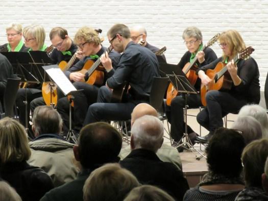 Gitaren tijdens het concert voor Anna3, november 2017