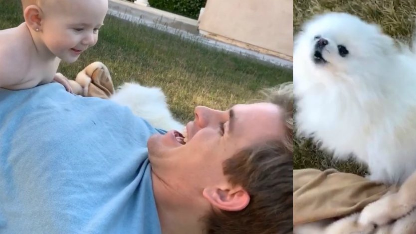 Cole Labrant's Dog Carl Howls as He Mimics His Owner…and it's the cutest Thing