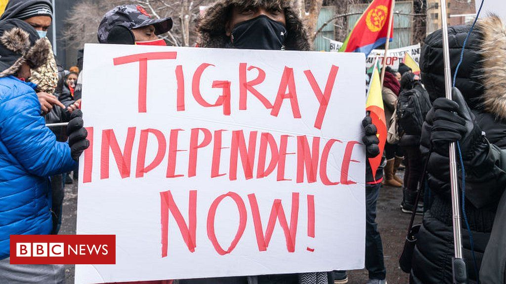 Tigray-conflict-The-fake-UN-diplomat-and-other-misleading-stories.jpg