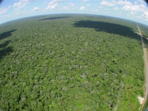 Vista aerea da floresta amazonica