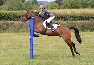 Taunton Horse Show 2011