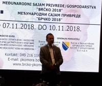 www.brckodanas.com-Sead Šadić