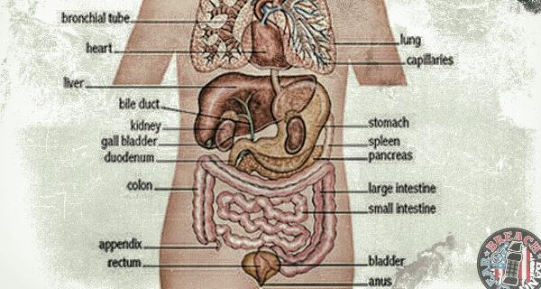 appendix005