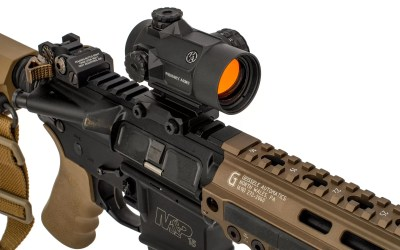 Primary Arms New Optics Options— RDS & Scope