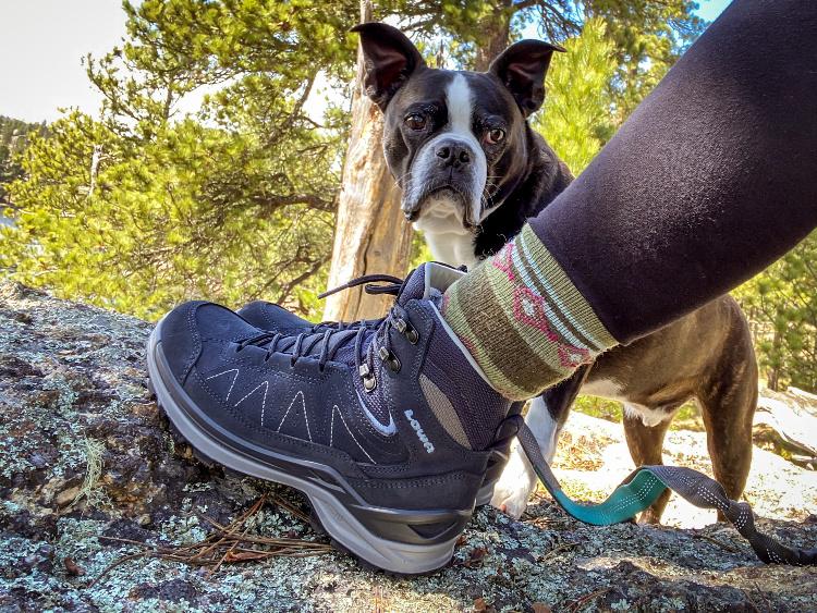 Lowa warm weather hiking boots - cute dog hiking partner.
