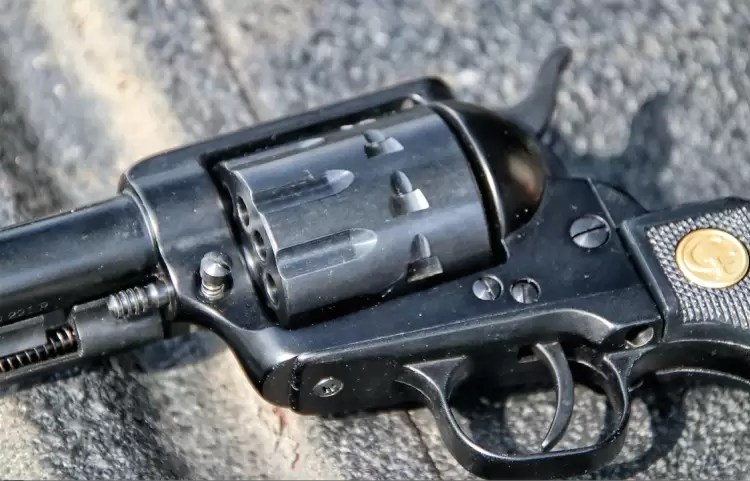 Chiappa revolver fluted cylinder