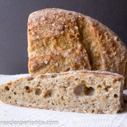 Fermented Sprouted Einkorn Spelt Porridge Bread