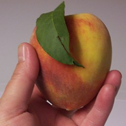 Nothing beats a Georgia Peach … Jam that is!
