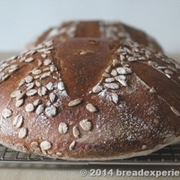 Ancient Grain Tartine-style Loaf with Spelt Einkorn and KAMUT