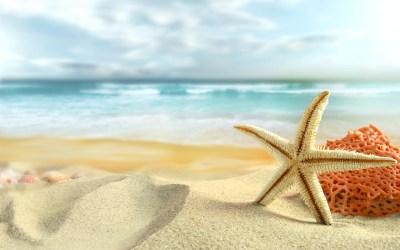 Sommeröffnungszeiten und Family Days im Break