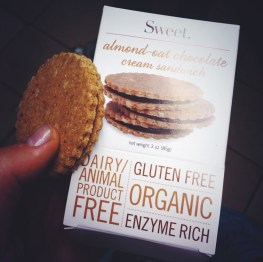 Sweet gluten free raw almond oat chocolate