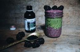 Elderberry Chia Pudding Recipe