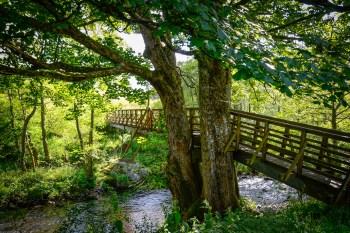 Footbridge over the river Lednock
