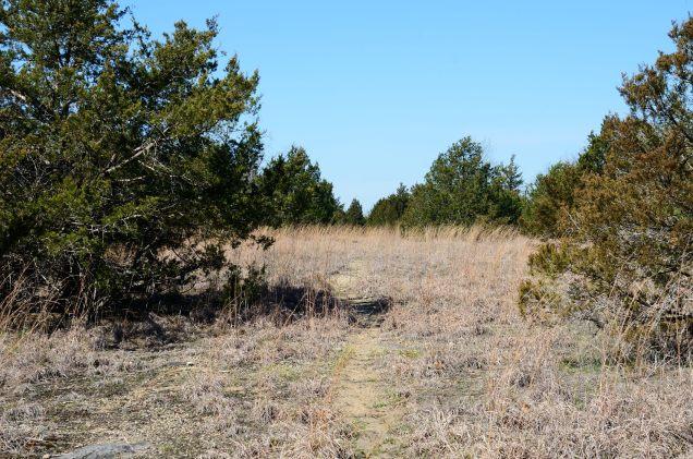 Pilot's Trail near Lower Pilot Knob - Hercules Glades